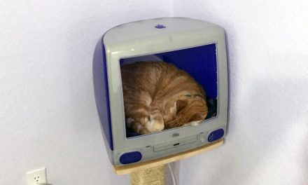 Make an iMac Cat House