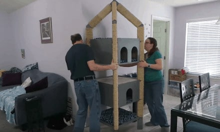 Make the Ultimate Cat Tower